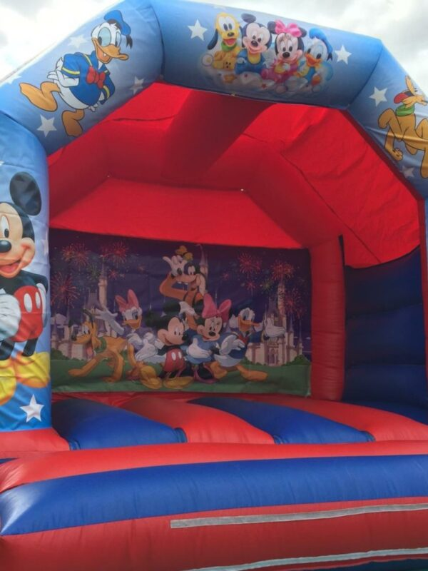 bouncy castle hire, popular cartoon character theme bouncy castle