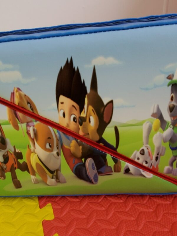 paw patrol soft play for playdates & events
