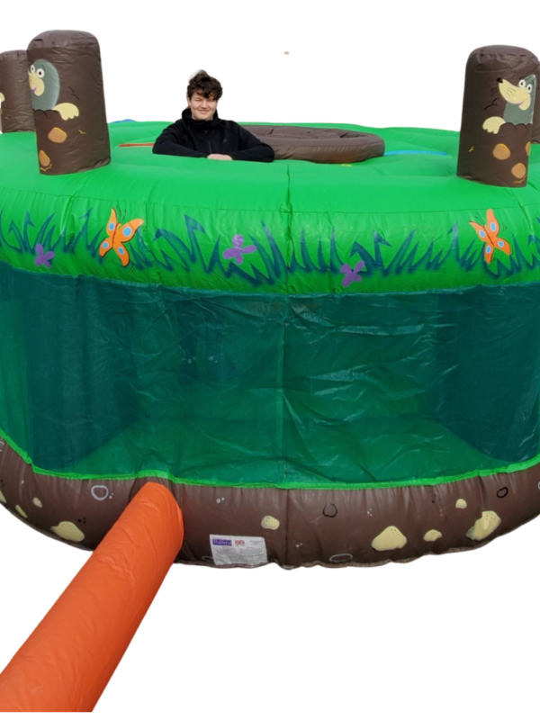 whack a mole inflatable to hire Kent